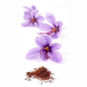 pl1000000346 300x300 - Nguồn gốc của nhụy hoa nghệ tây (Saffron)